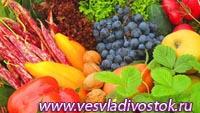 C 15 марта по 15 апреля в Молдавии пройдет первая всеобщая сельскохозяйственная перепись