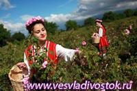 В Болгарии пройдет Фестиваль розы