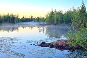 Сибирь (отрывки из поэмы)