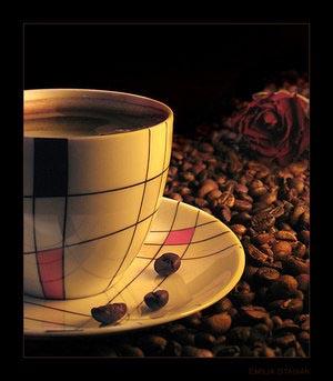 Колумбия привлекает туристов кофем