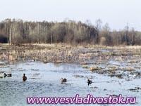 В Молдове создадут уникальный национальный парк
